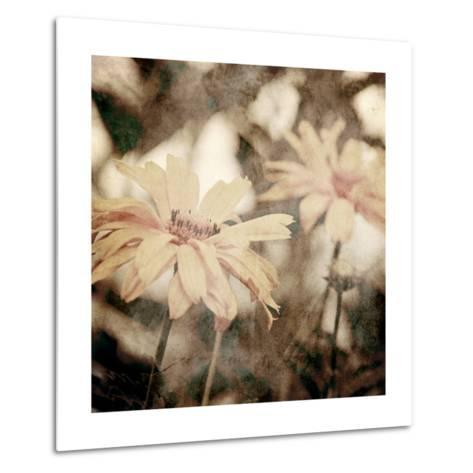 Art Floral Vintage Sepia Background with Light Yellow Chamomiles-Irina QQQ-Metal Print