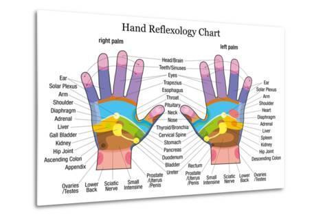 Hand Reflexology Chart Description-Peter Hermes Furian-Metal Print