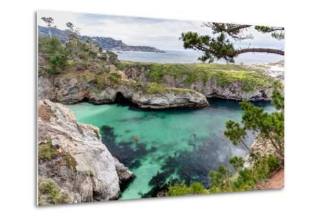 Point Lobos State Natural Reserve-Wolterk-Metal Print