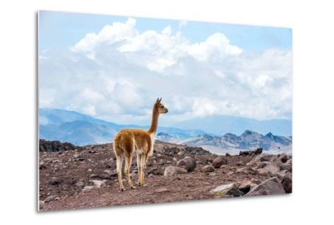 Andes of Central Ecuador-xura-Metal Print
