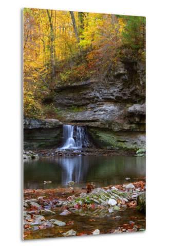 Autumn waterfall in McCormics Creek State Park, Indiana, USA-Anna Miller-Metal Print