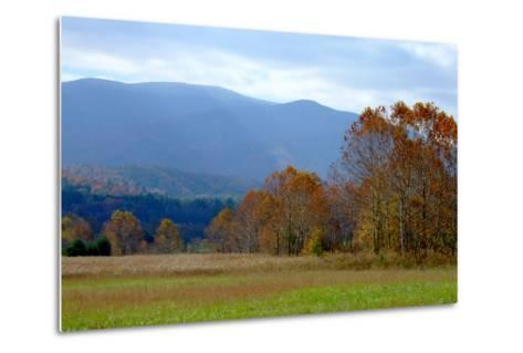 Autumn in Cades Cove, Smoky Mountains National Park, Tennessee, USA-Anna Miller-Metal Print