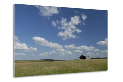 An Abandoned Barn in a Vast Field under a Sky with Puffy Clouds-Michael Forsberg-Metal Print