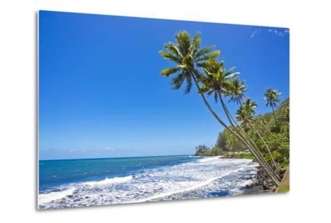 Tall, Thin Palm Trees Reaching Out to Sea on the Coast of Tahiti-Mike Theiss-Metal Print