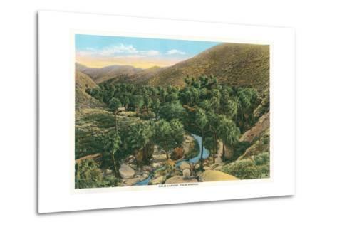 Palm Canyon, California--Metal Print