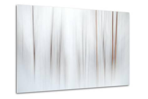Fog-Ursula Abresch-Metal Print