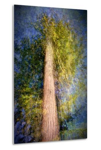 The Ent-Ursula Abresch-Metal Print