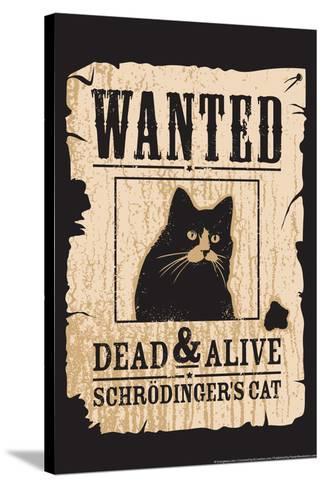 Schrodinger's Cat-Snorg-Stretched Canvas Print