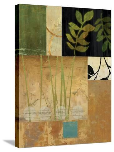 Leaves of Green II-Andrew Michaels-Stretched Canvas Print