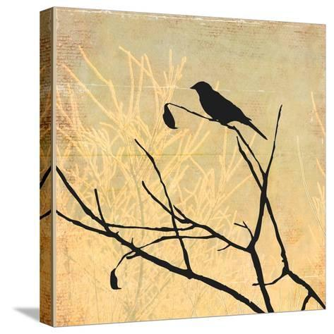 Perched-Andrew Michaels-Stretched Canvas Print