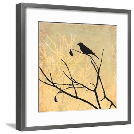 Perched-Andrew Michaels-Framed Art Print