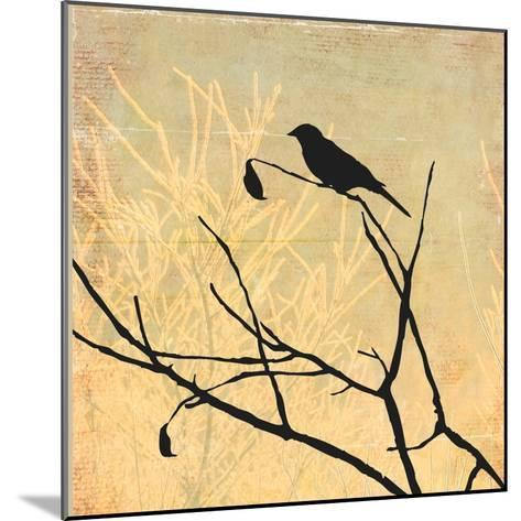 Perched-Andrew Michaels-Mounted Art Print
