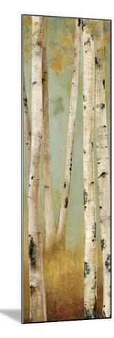 Eco Panel II-Andrew Michaels-Mounted Art Print