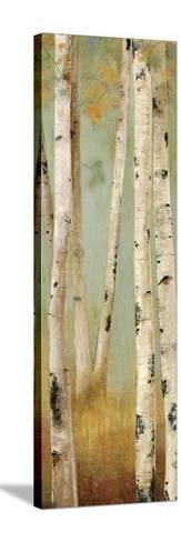 Eco Panel II-Andrew Michaels-Stretched Canvas Print