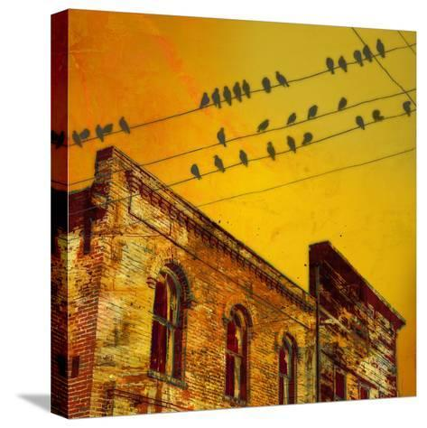 Birds on a Wire I-James McMasters-Stretched Canvas Print