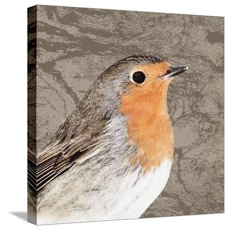 Feathered V-Anna Polanski-Stretched Canvas Print