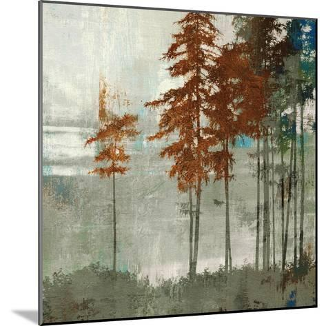 Spruce Woods II-Andrew Michaels-Mounted Art Print