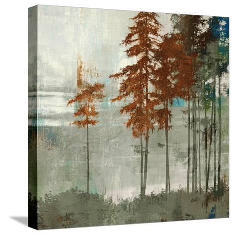 Spruce Woods II-Andrew Michaels-Stretched Canvas Print
