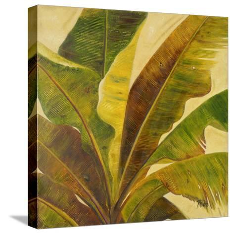 Uraba I-Patricia Pinto-Stretched Canvas Print