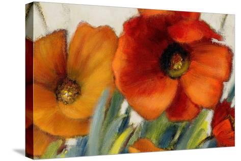 Poppy Splendor II-Lanie Loreth-Stretched Canvas Print