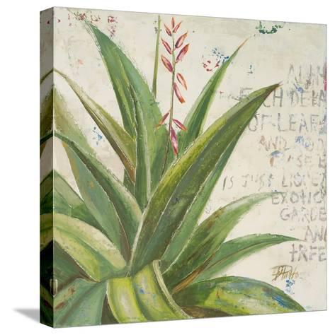 Aloe II-Patricia Pinto-Stretched Canvas Print
