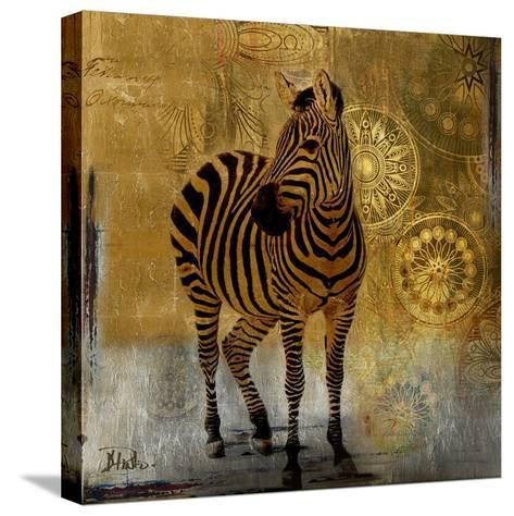 Expedition Square II-Patricia Pinto-Stretched Canvas Print