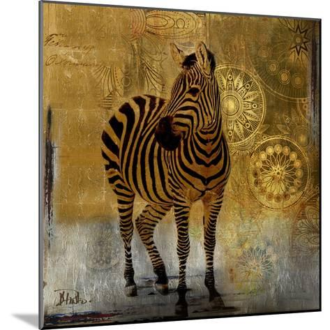 Expedition Square II-Patricia Pinto-Mounted Premium Giclee Print