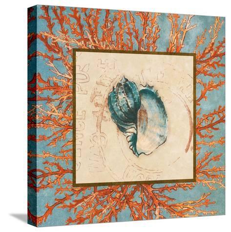 Coral Medley Shell II-Lanie Loreth-Stretched Canvas Print