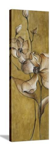 Translucent Magnolias on Gold-Lanie Loreth-Stretched Canvas Print