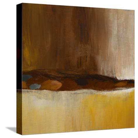 Hidden Passage II-Lanie Loreth-Stretched Canvas Print