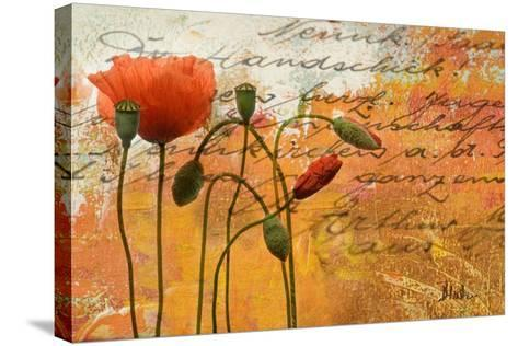 Poppies Composition I-Patricia Pinto-Stretched Canvas Print