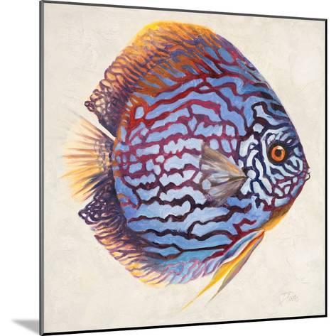 Little Fish I-Patricia Pinto-Mounted Premium Giclee Print