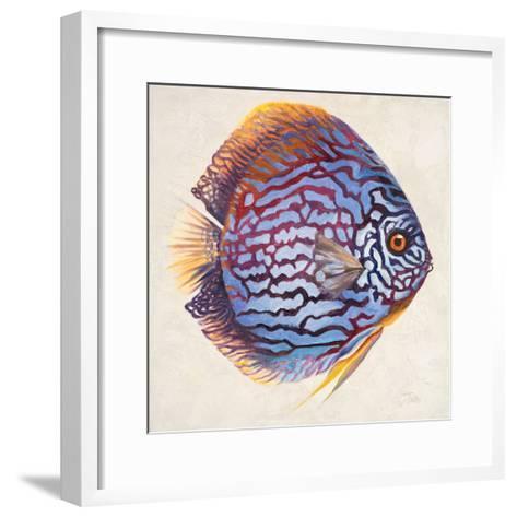 Little Fish I-Patricia Pinto-Framed Art Print