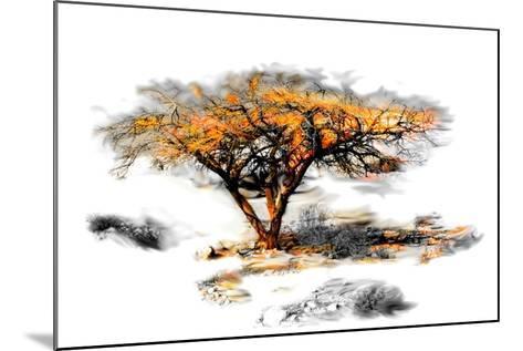 Trees Alive II-Ynon Mabat-Mounted Art Print