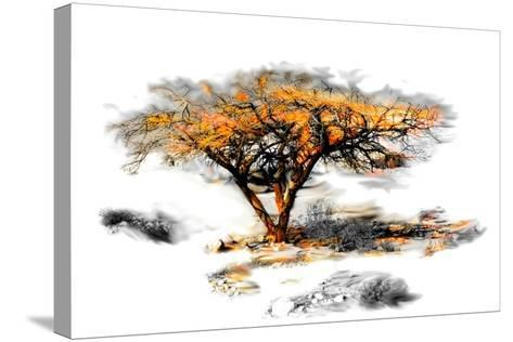 Trees Alive II-Ynon Mabat-Stretched Canvas Print