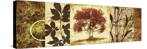 Red Tree Panel I-Michael Marcon-Stretched Canvas Print