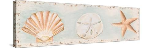 Sandy Shells I-Tiffany Hakimipour-Stretched Canvas Print