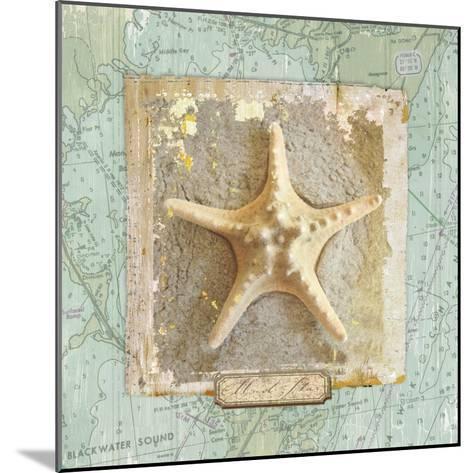 Seashore Collection III-Elizabeth Medley-Mounted Premium Giclee Print