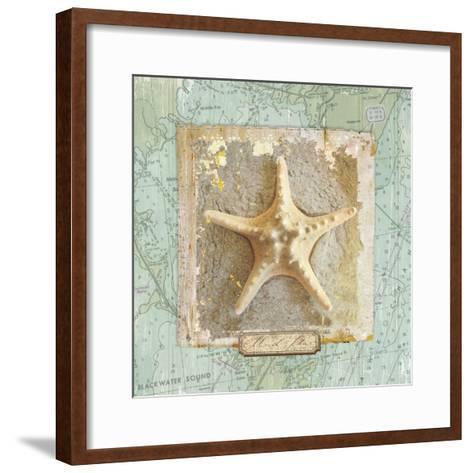 Seashore Collection III-Elizabeth Medley-Framed Art Print