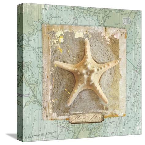 Seashore Collection III-Elizabeth Medley-Stretched Canvas Print