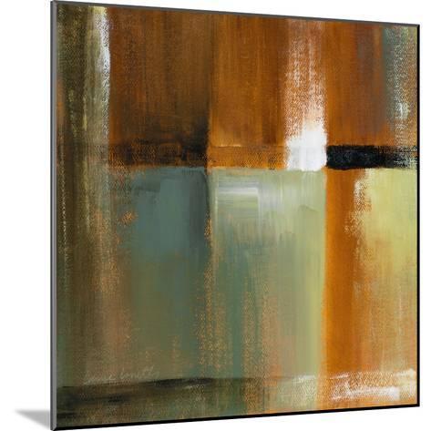 Sonoran Shadows IV-Lanie Loreth-Mounted Premium Giclee Print