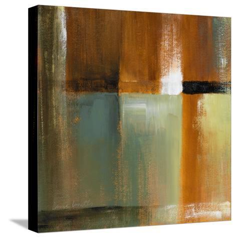 Sonoran Shadows IV-Lanie Loreth-Stretched Canvas Print