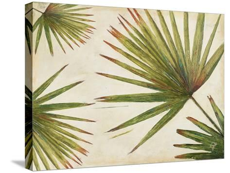 Organic I-Patricia Pinto-Stretched Canvas Print