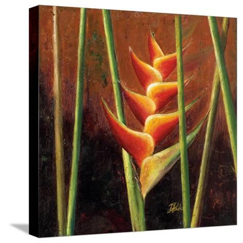 Heliconias En Naranja II-Patricia Pinto-Stretched Canvas Print