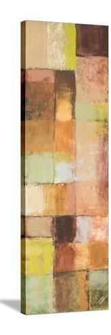 Autumn Mixtures III-Michael Marcon-Stretched Canvas Print