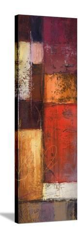 Deconstructing Panel II-Michael Marcon-Stretched Canvas Print