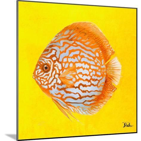 Bright Aquatic Life IV-Patricia Pinto-Mounted Premium Giclee Print