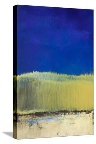 Blue Lagoon II-Lanie Loreth-Stretched Canvas Print