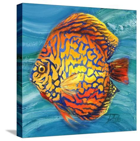 Aquatic Life II (Vibrant Sea Life IV)-Patricia Pinto-Stretched Canvas Print