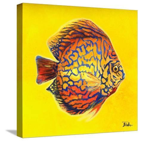 Bright Aquatic Life I-Patricia Pinto-Stretched Canvas Print